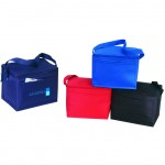 (4051) POLY 6-PACK COOLER